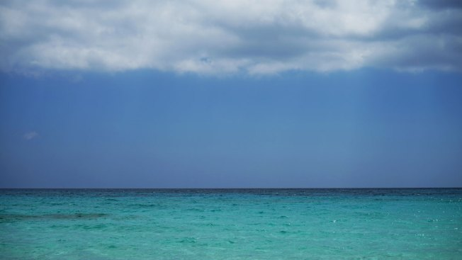 Ocean Meeting Raises Over $7 Billion for Marine Protection