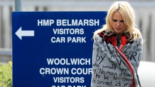 Pamela Anderson Says Treatment of WikiLeaks' Julian Assange Unfair