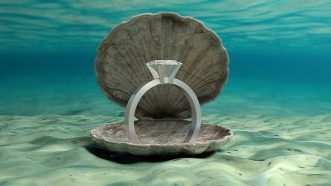 American Man Dies During Underwater Marriage Proposal in Tanzania