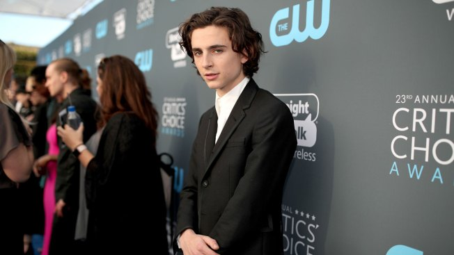 Timothee Chalamet Donates Salary From Woody Allen Film To Time's Up, RAINN