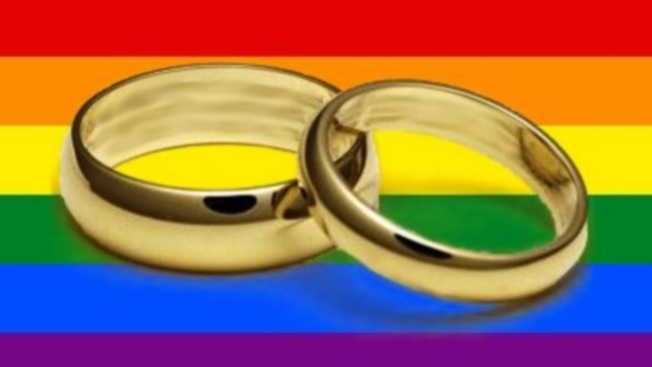 Florida Group Tries to Stop Gay Marriages