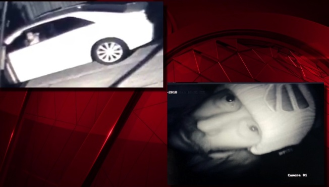 Man Caught on Video Stealing Surveillance Camera