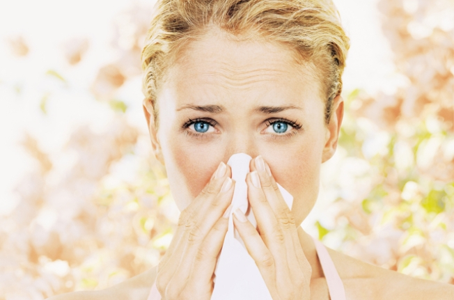 Top Allergy Myths