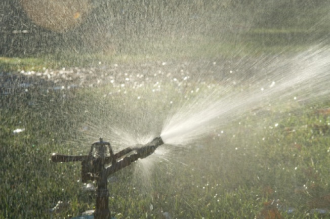 Southlake Cracks Down on Illegal Watering