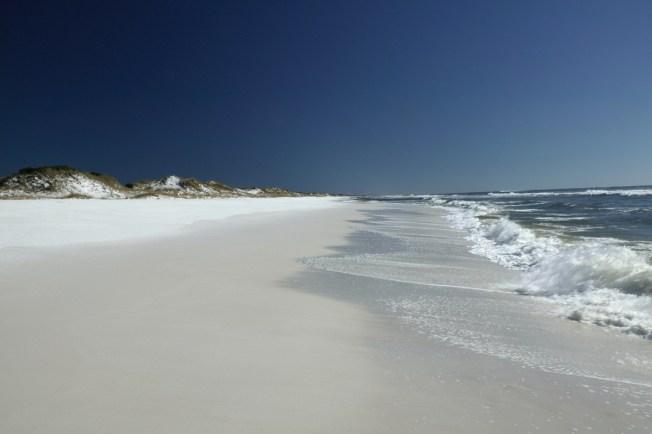 Environmentalists Create Nonprofit Texas Coastal Exchange