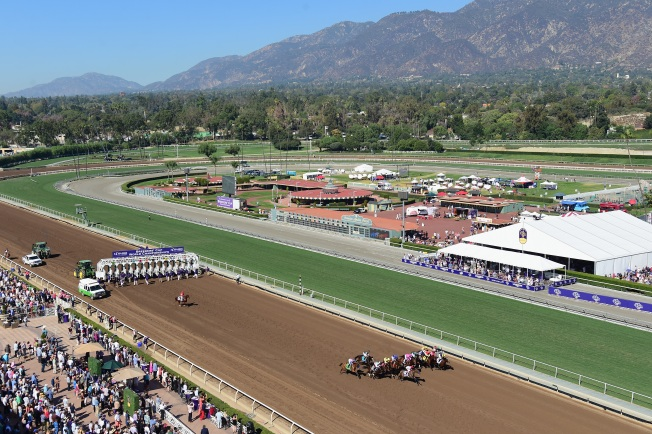 Task Force to Investigate Santa Anita Horse Deaths