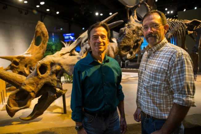 Dig Dinosaurs? The New Paleo Lab at the Perot Museum Lets You Watch Science as it Happens