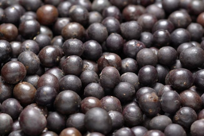 BBB Says Acai Berry Trial Offers Not So Sweet