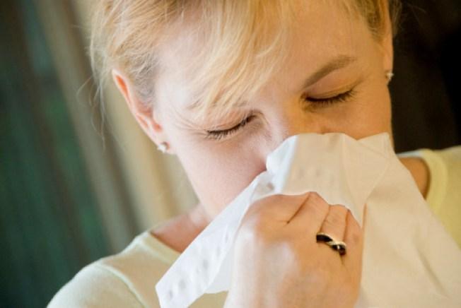 Blame Global Warming For Worsening Allergies