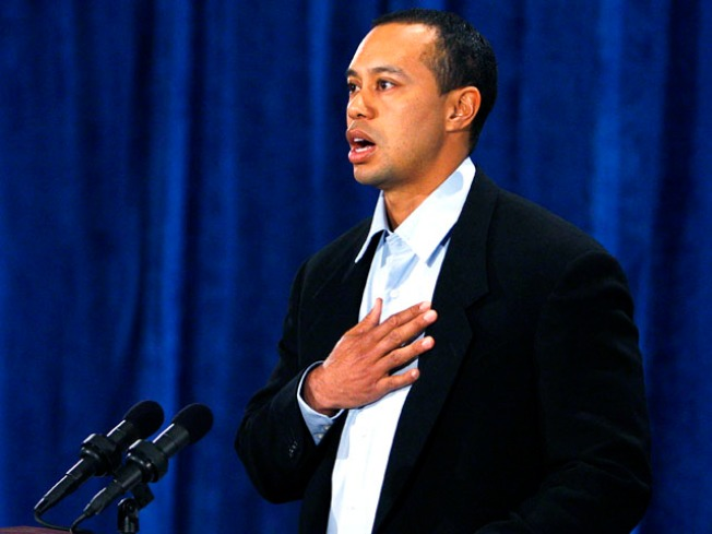 Stars Weigh in on Tiger's Apology