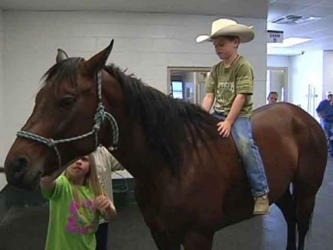 Small Cowboy-in-Training Reunited With His Horse