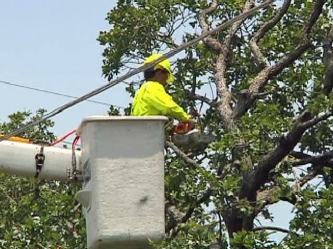 Homeowners Upset Over Oncor Tree Cutting