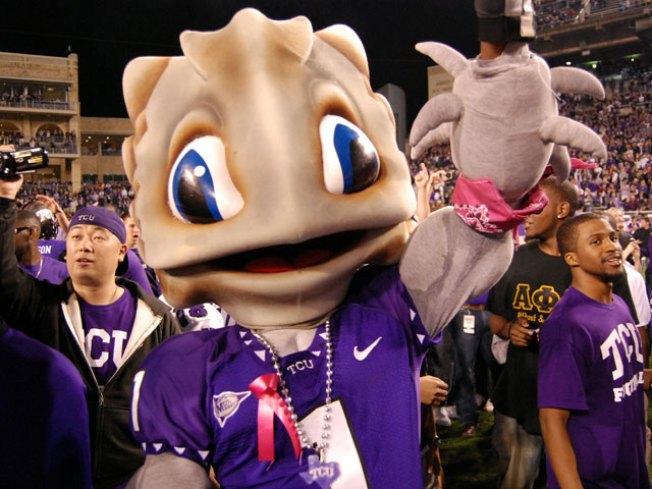TCU Hosts Frog-Watching Party Saturday