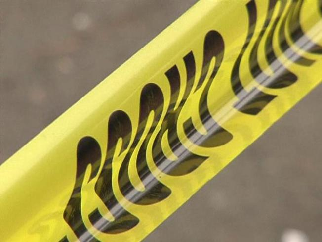 3 Found Dead In Garland Home