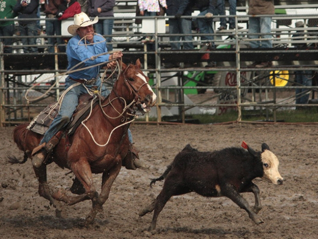 Fort Worth Kicks Off Stock Show & Rodeo