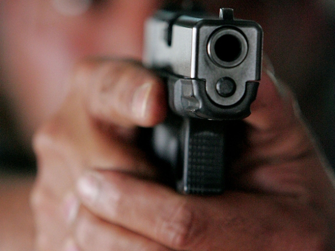 Property Owner Shoots Suspected Thieves