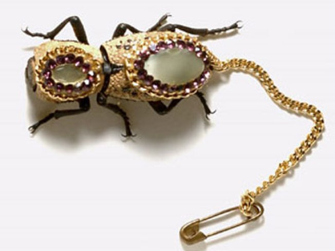 Jeweled Beetle Brooch Just a Bug at the Border