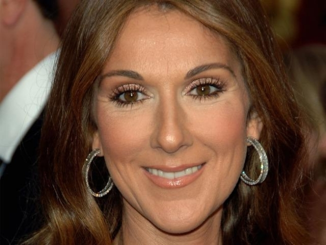 Celine Dion: Twins On The Way!