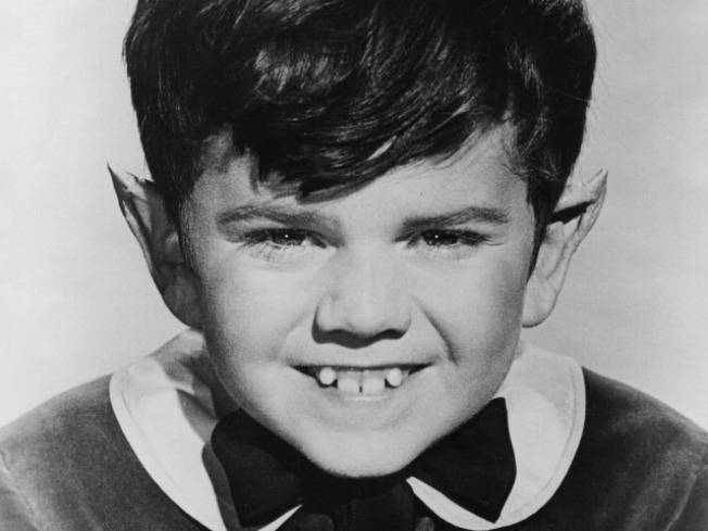 Eddie Munster To Wed Cheerleader