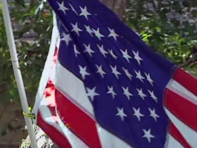 Flag Flap Flies in The Colony