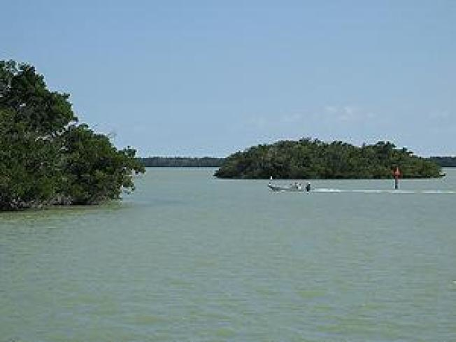 Estuary Monitoring Benefits Florida Keys Waterways