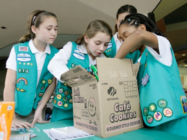 That Stinks! Smelly Girl Scout Cookies Recalled