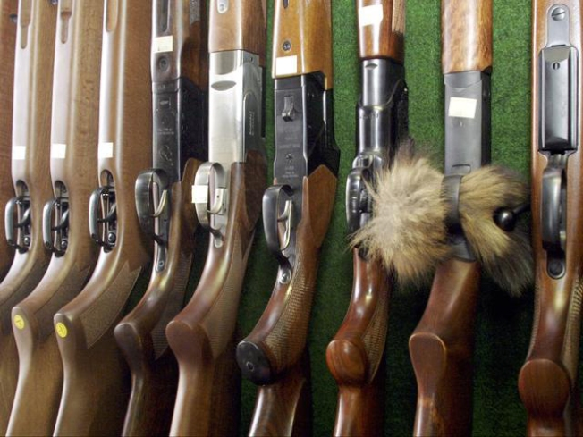 "Lawsuit: ""USA vs. 594 Assorted Rifles"""