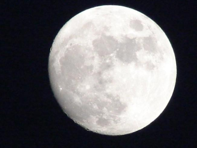 Lunar Surprise: H2O Discovered on Moon's Surface