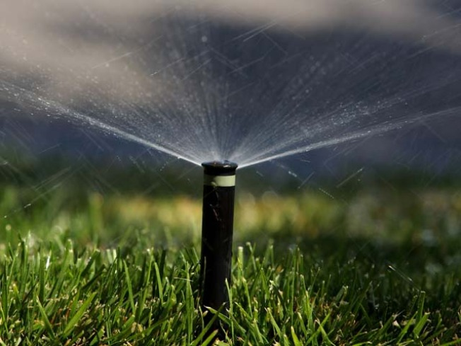 Crash Diet: How Dramatic Steps Cut McKinney's Water Use