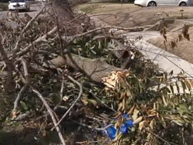 Dallas Vows to Pick Up Feb. Storm Debris By Next Month