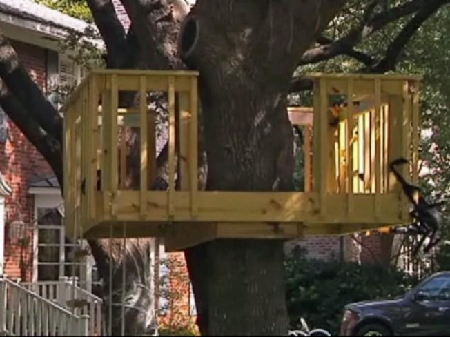 University Park Nixes Kids' Tree House