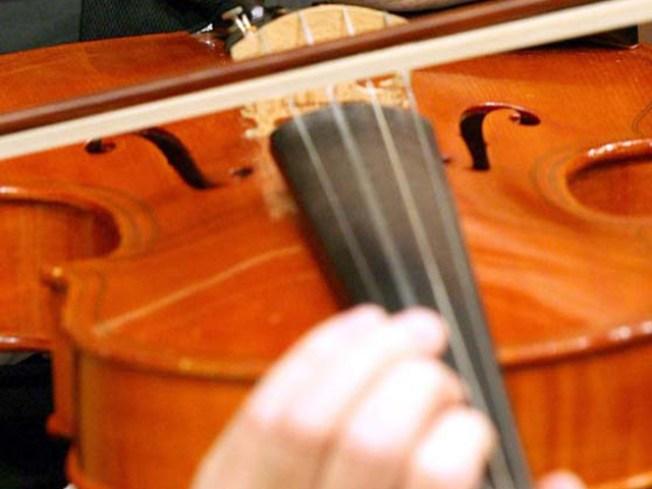 Musician Wants Stolen Viola Returned