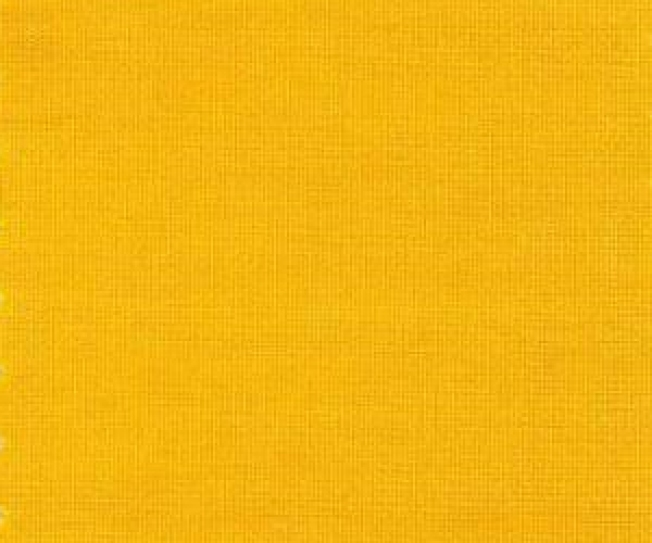 'Mimosa' is Pantone's Pick For Color of 2009: We Disagree