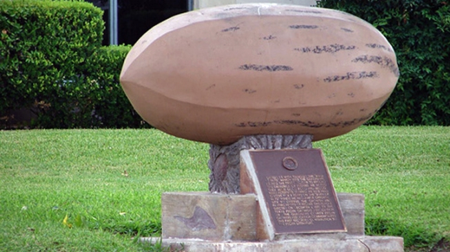 World's Largest Nut in Texas