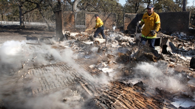 Campaign Under Way to Replace 4 Million Burned Trees