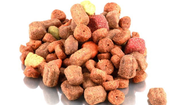 Contaminated Dog Food Hospitalizes 10 People