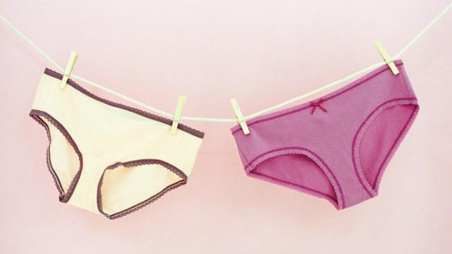 Boca Raton Women Pilfer 600 Panties: Cops