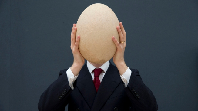 Huge Elephant Bird Egg Sold For $101,813 in U.K. Auction