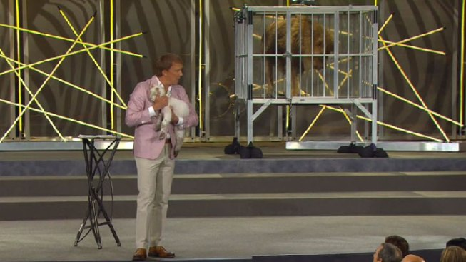 Pastor Brings Live Lion and Lamb on Stage for Sermon