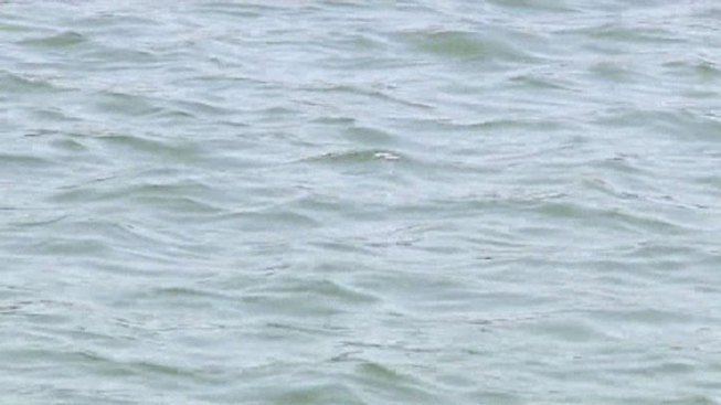 Officials Recover Body from Central Texas Lake