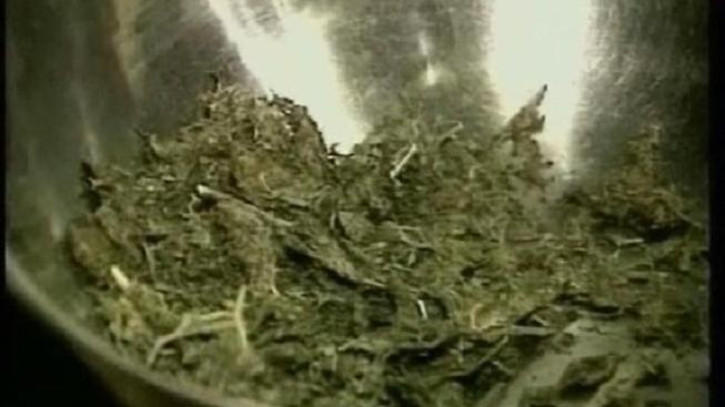 Baby Found in Room Surrounded by Marijuana, Police Say