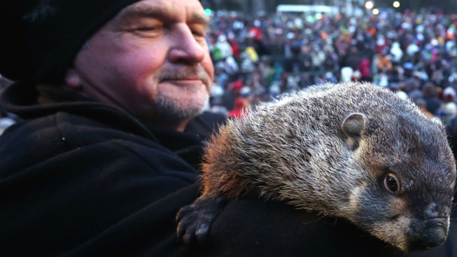 Pa. Groundhog's Handler Takes Blame for Forecast