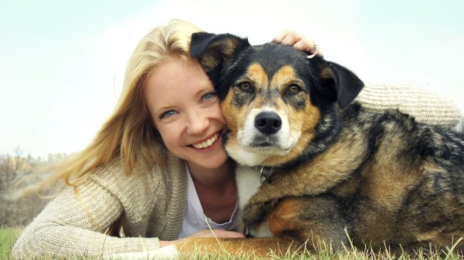 Your Pet Adoption Checklist