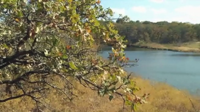 Southwest Nature Preserve Opens in Arlington