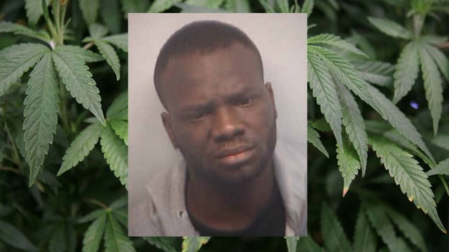 Man Caught With 75 Pounds of Pot at DFW Airport