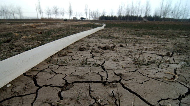 Drought Recalls Dry Spell of 1950s