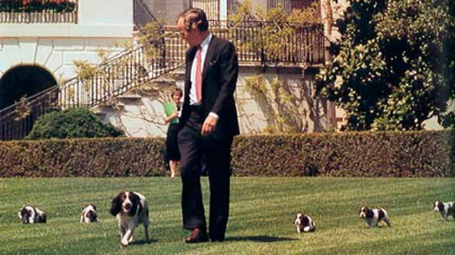White House Pets Focus of New Book