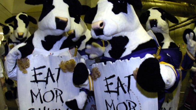 Cow Suits Score Free Chicken Today
