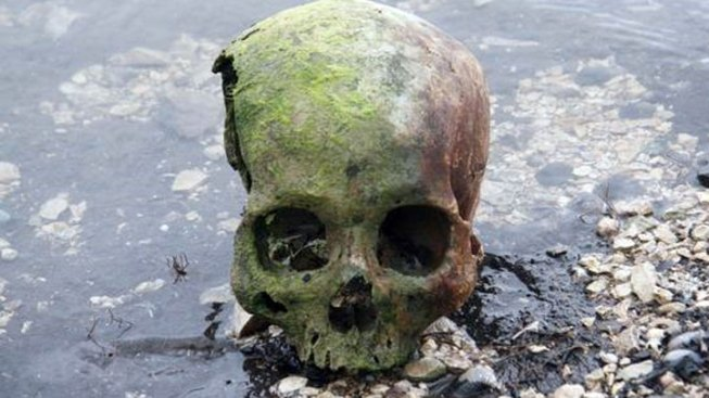 Skull Found at Lake Georgetown Could Be Prehistoric