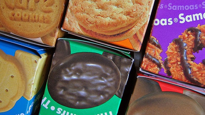 Man Robs Girl Scouts of Cookie Money